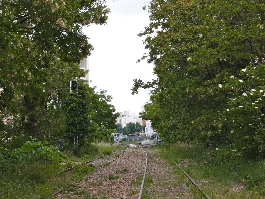 20th_district_section_petite_ceinture_may_2015
